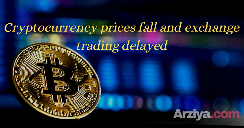 Cryptocurrency prices fall and exchange trading delayed